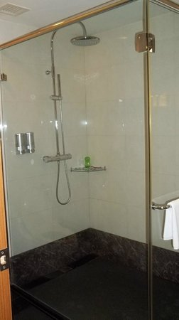 Fullon Hotel Taoyuan: Walk in shower
