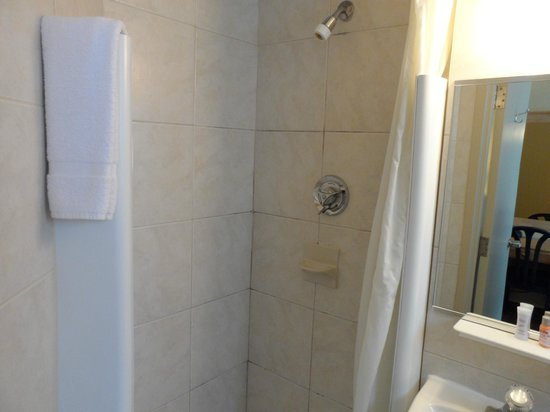 Travelodge Montreal Centre: The tiny shower.