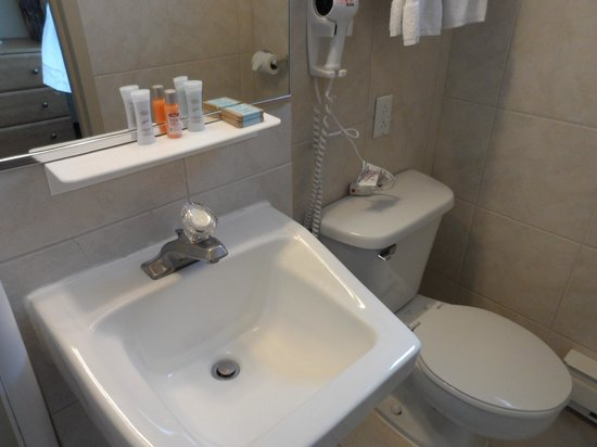 Hotel Travelodge Montreal Centre: Toilet and sink.
