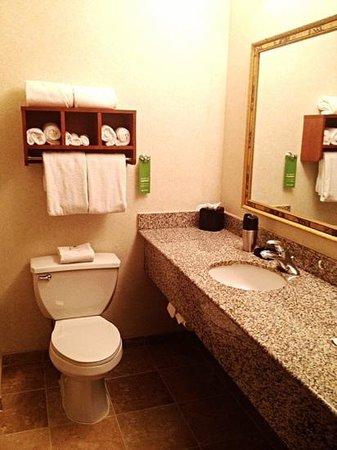 Hampton Inn And Suites Steamboat Springs: Bathroom.