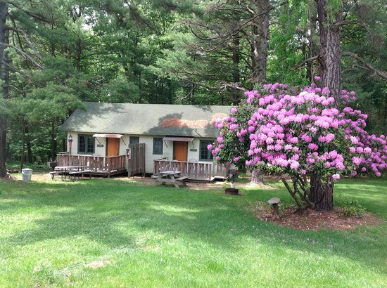 Pocono Pines Motor Inn & Cottages : The cabins