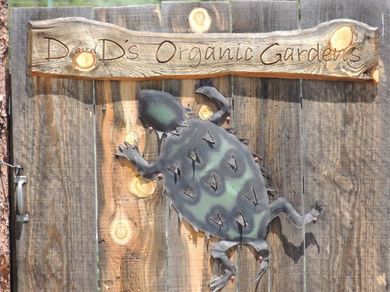 D and D's Organic Haven: The gate to their gardens