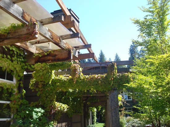 Alderbrook Resort & Spa: grounds