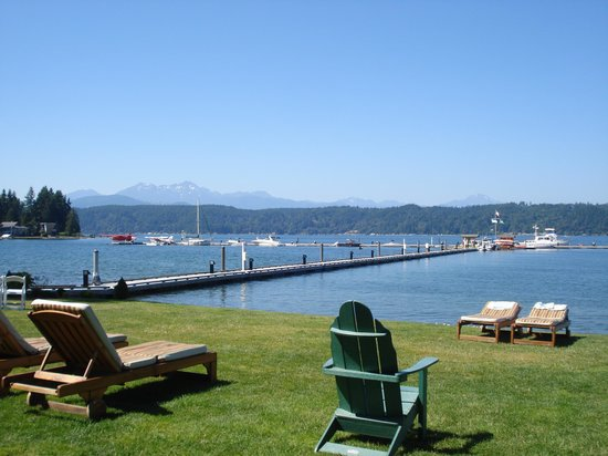 Alderbrook Resort & Spa: amazing view
