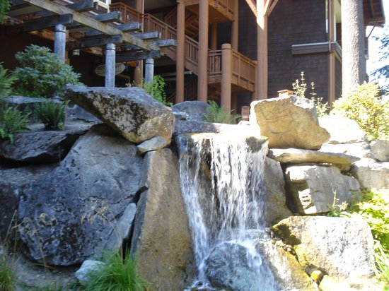 Alderbrook Resort & Spa: lovely peacful grounds