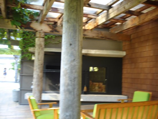 Alderbrook Resort & Spa: fireplace by the spa