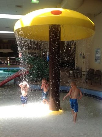 Best Western Plus Ramkota Hotel: fun raining mushroom