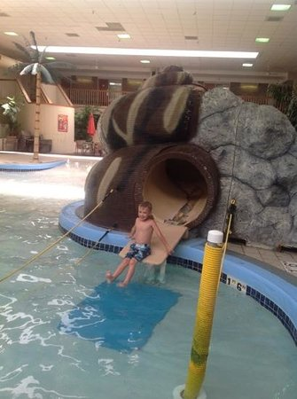 BEST WESTERN PLUS Ramkota Hotel: rattlesnake slide