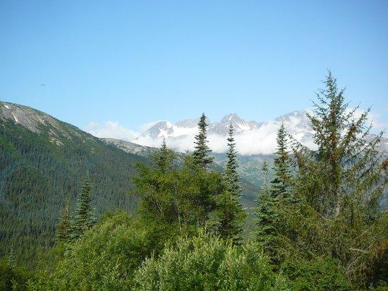 Denali Backcountry Lodge: Beautiful