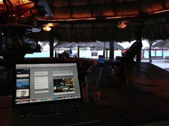 Parrot Tree Beach Resort: Free Wifi at La Palapa (hotel bar and restaurant)