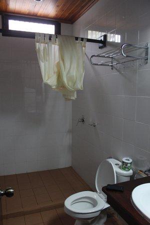 Treasure Hotel Laos: A decent shower