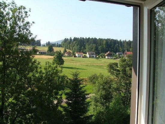 Hotel Hirschen: Uitzicht erg mooi