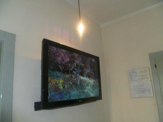 Hotel Michelangelo: Partcolare della Tv