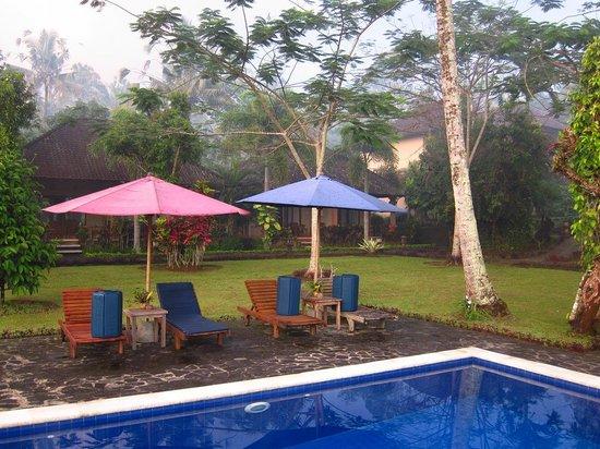 Mahagiri Panoramic Resort & Restaurant : コテージの庭先にある気持ちのよいプール