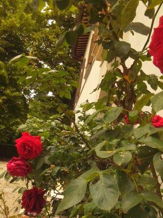 Villa Castoriana: tra le rose