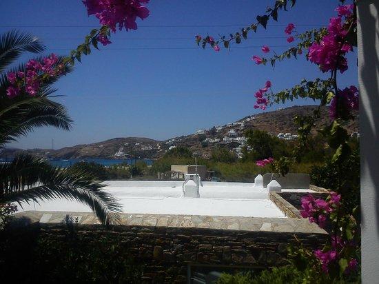 Dionysos Seaside Resort: Θέα από το δωμάτιο