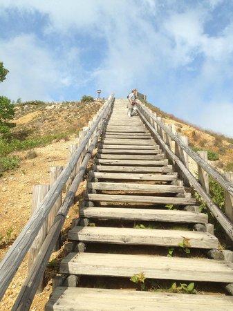 Yumiike: 階段