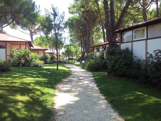Jesolo Camping Village - Villaggio Turistico Adriatico: bungalow nella pineta