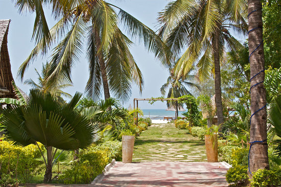 Kijiji Beach Resort: Path