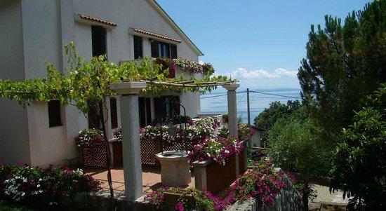 Apartments Kinkela: terrazzo