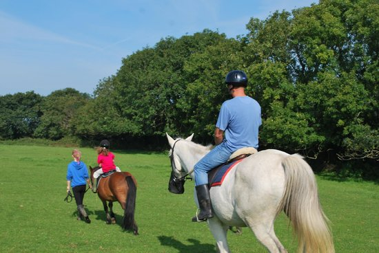 Gooseham Barton Stables & Farm Cottages: An enjoyable hack for all family members!