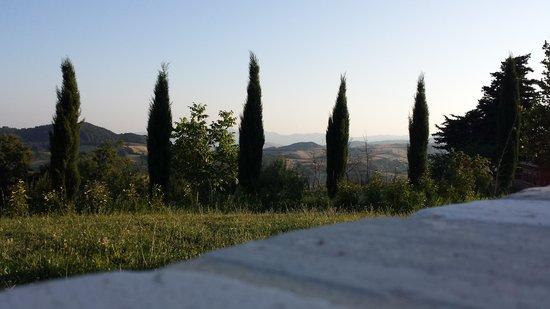Il Borgo del Lupo : Views from the Pool (1)