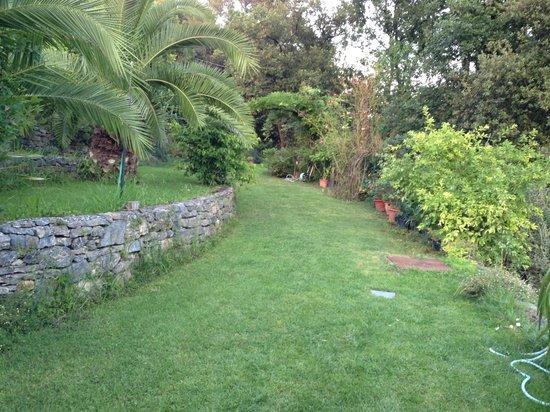 Agriturismo Gallerani : Giardino