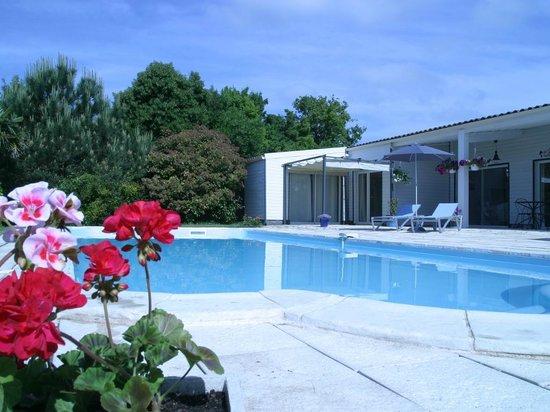 Au Bois des Tilleuls : La piscine