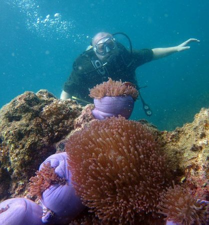 Rainbow Scuba and Tours: Adam took great pictures!