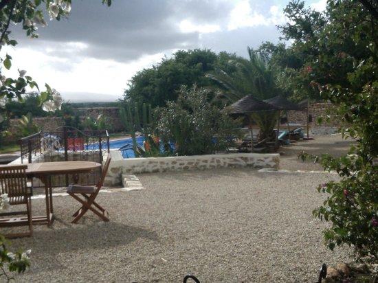 Dar Maris Maison d'hotes: piscine