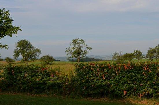 Beacon Hill Farm: What a view to wake up to