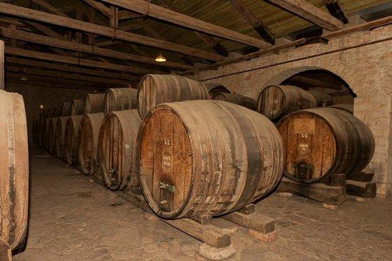 Royal Cellar Bild Von Achaia Clauss Winery Patras