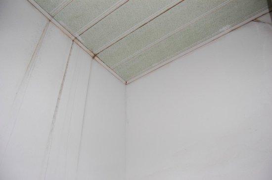 Sapa Green Tree Hotel: Roof of the bathroom