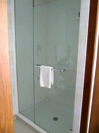 SpringHill Suites Pittsburgh Bakery Square : Shower stall