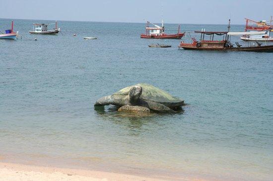 Crystal Dive Resort: Koh Tao