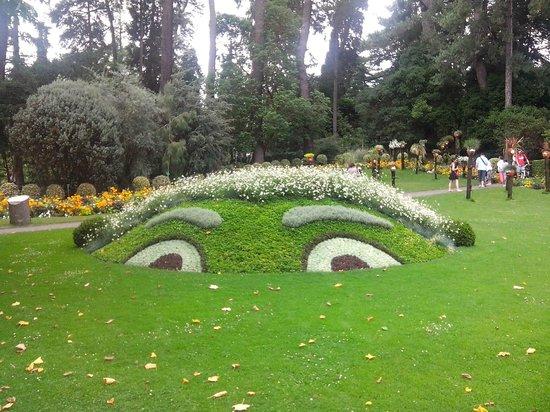 Le poussin nantais au jardin des plantes photo de jardin for Au jardin info plantes