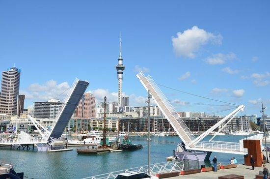 Bridges Up Picture Of Viaduct Harbour Auckland