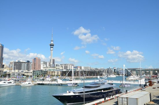 Viaduct Harbour : boats & buildings