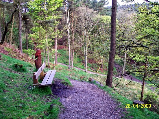 Ogden Water Country Park & Nature Reserve: Woodland Trail