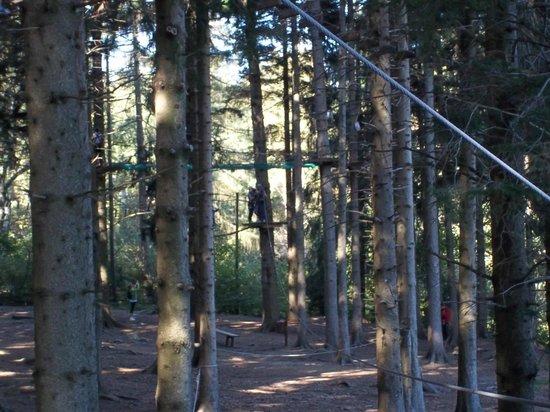 Jungle Raider Park: parco3