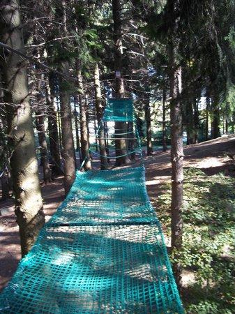 Jungle Raider Park: parco2