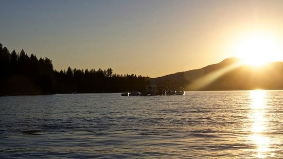 Dover Bay Resort Sandpoint: Waterfront at it's best