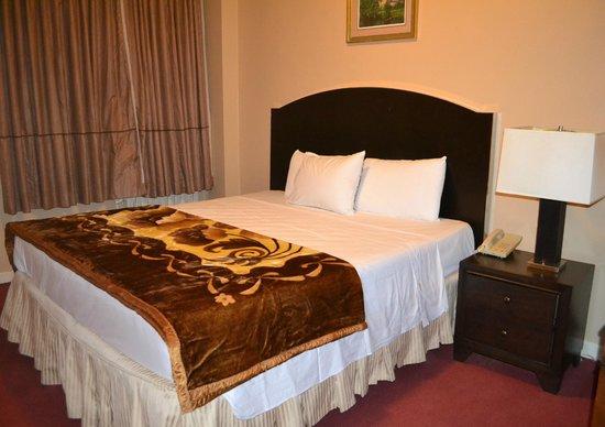 Hotel Carter: Apartamento