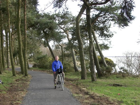 The Loch Leven Heritage Trail near Burleigh Sands beach