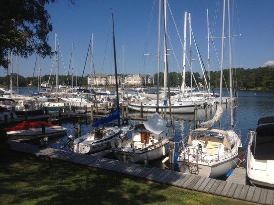 Spring Cove Marina