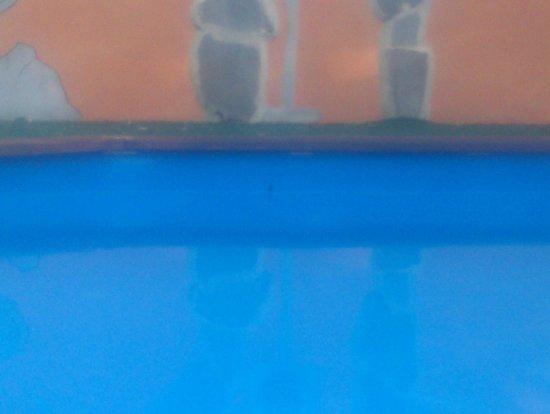Hotel Antica Locanda della Francigena : terribile piscina