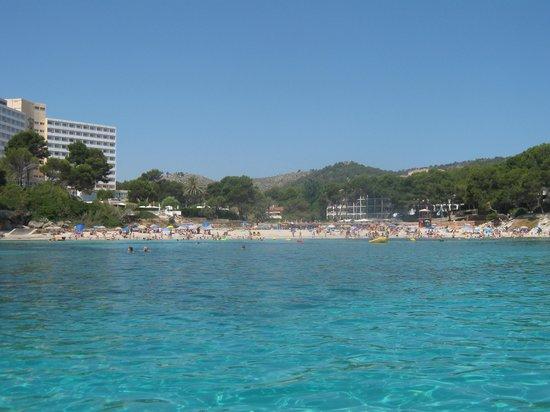 Aparthotel Flacalco Suites: Spiaggia Sa font de Sa Cala