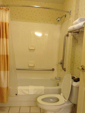 SpringHill Suites Atlanta Alpharetta: bathroom