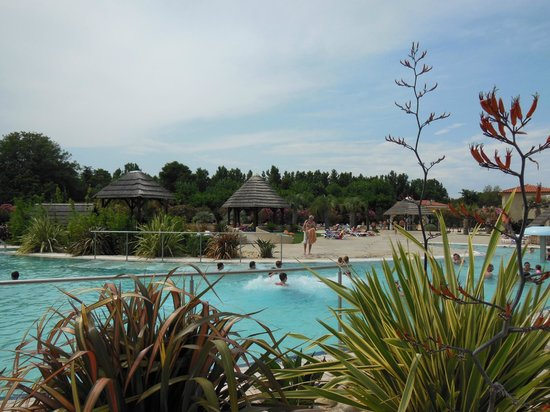 Piscine picture of camping le dauphin argeles sur mer for Camping boulogne sur mer avec piscine