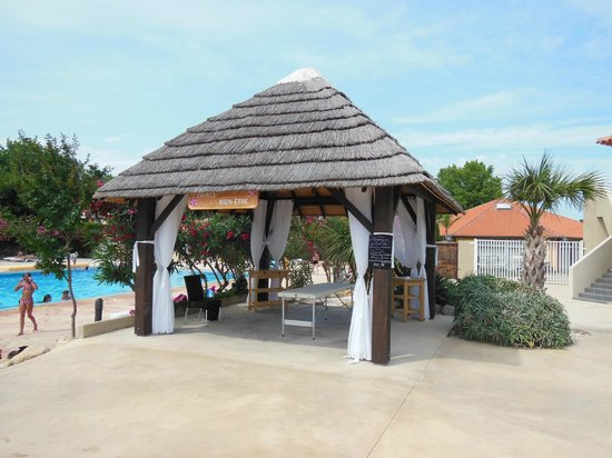 Piscine picture of camping le dauphin argeles sur mer for Camping cavalaire sur mer avec piscine